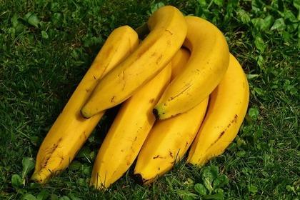束になっているバナナ
