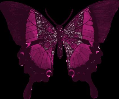 ピンクユリシス