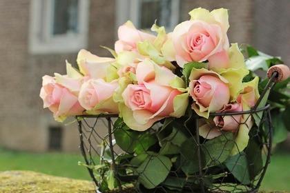 Middle roses 54e2d54b48 1280
