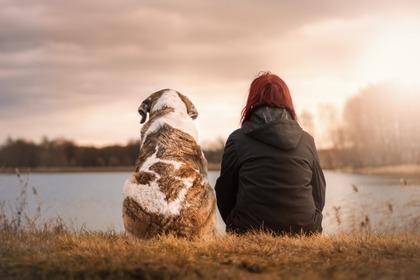 犬と待つ人