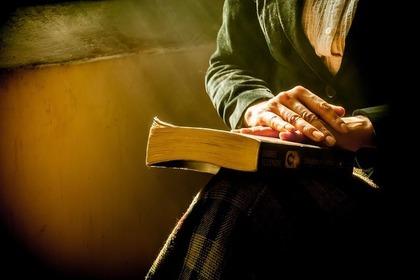 本を見る人