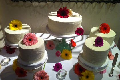 綺麗なケーキ