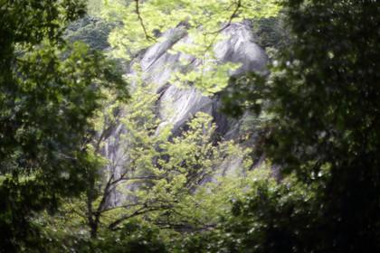 渓谷の写真