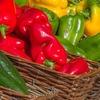 Small thumb vegetables 3727960 1280