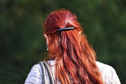 hair clasp