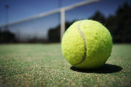 コート内に置かれた硬式テニスボール