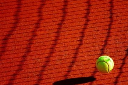 ネットの影と硬式テニスボール