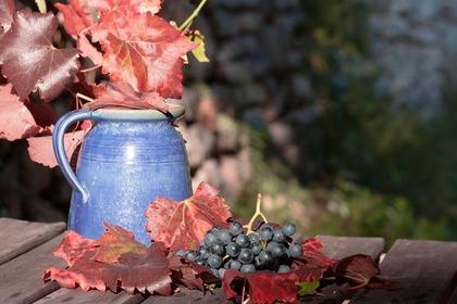 容器とブドウ