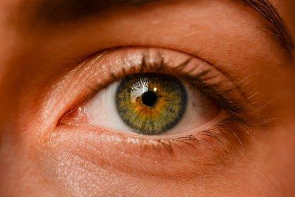 綺麗なグリーンカラーが魅力的な目
