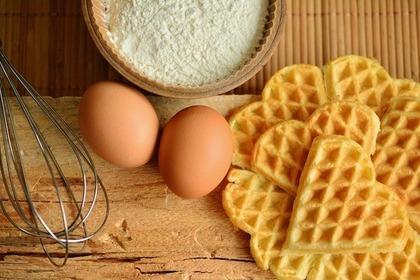 卵のある風景
