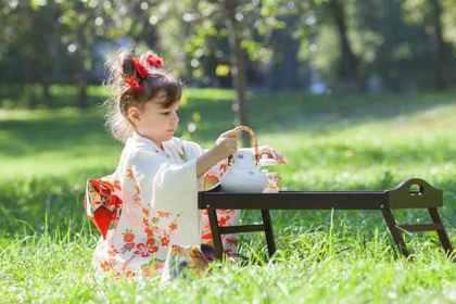 野原でお茶を淹れる着物の女の子