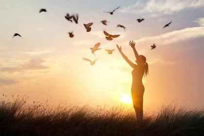 鳥に手を伸ばす人