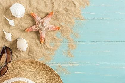ヒトデや貝殻など海辺のもの