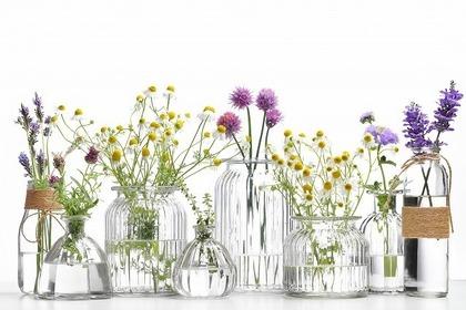 ガラス瓶に入った花々