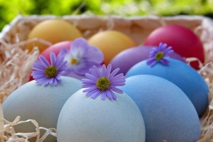 卵の入ったバスケット