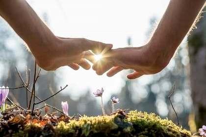 花に手をかざす人