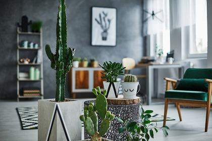 洗練されたデザインの家具と部屋