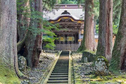 神社の鳥居の色